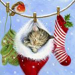 Аватар Котенок в новогоднем спит в новогоднем колпаке