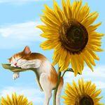 Аватар Котенок спит на листе подсолнуха, by Veronica Minozzi