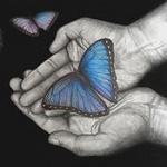 Аватар На руке человека сидит бабочка