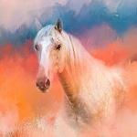Аватар Белая лошадь в розово - голубой дымке