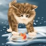 Аватар Котенок смотрит на рыбку в воде, by Veronica Minozzi