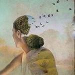 Аватар С прически девушки вылетают птицы