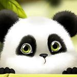 Аватар Милая большеглазая панда