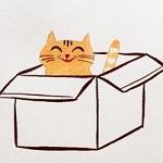 Аватар Котенок сидит в коробке