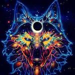 Аватар Абстрактное, в ярких цветах, изображение волка