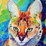 Аватар Рисованная кошка, by TooMuchColor