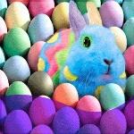 Аватар Кролик сливается в окружении разноцветных яиц