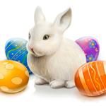 Аватар Белый кролик сидит среди пасхальных яиц