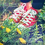 Аватар Ножки, обутые в кеды стоят в траве среди одуванчиков