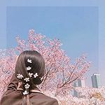 Аватар Девушка с цветами сакуры в волосах