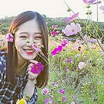 Аватар Девушка среди цветов космеи