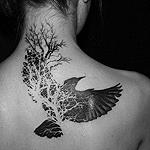 Аватар У девушки на спине татуировка в виде птицы и дерева