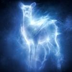 Аватар Призрачный олененок на темном фоне