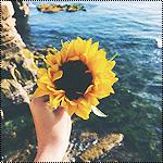 Аватар Рука с цветком на фоне моря