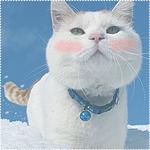 Аватар Ширанеко стоит в снегу