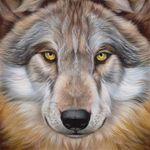 Аватар Морда волка с желтыми глазами, британский художник-иллюстратор Эйан Хиггинс Джонезис / Eyan Higgins Jonesis