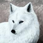 Аватар Рисованный белый волк
