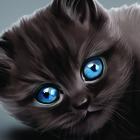 Аватар Черный кот с голубыми глазами