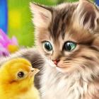 Аватар Кошка смотрит на цыпленка