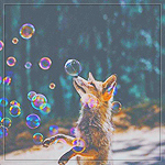 Аватар Лиса играет с мыльными пузырями
