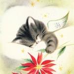 Аватар Котик с крылышками спит в облаке держа цветок