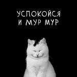 Аватар Счастливый котик на черном фоне (УСПОКОЙСЯ И МУР МУР)