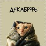 Аватар Рыжий котик, закутанный в плед (ДЕКАБРРРЬ)
