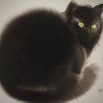 Аватар Черный пушистый кот
