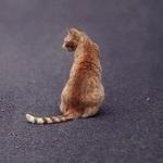 Аватар Рыжая полосатая кошка сидит на асфальте спиной к камере
