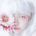 Аватар Девушка-альбинос с розовыми герберами у лица