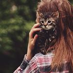 Аватар Котенок на плече девушки