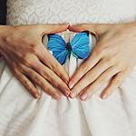 Аватар Голубая бабочка у рук девушки