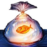Аватар Золотая рыбка в пакете с водой