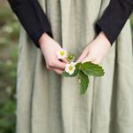 Аватар В руках девушки весенний цветок