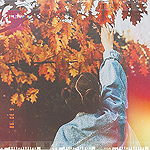 Аватар Девушка тянется к ветке клена