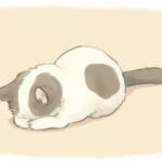 Аватар Спящий котенок на светлом фоне