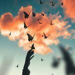 99px.ru аватар Над рукой девушки бабочки