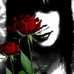 Аватар Красные розы на фоне размытого изображения девушки