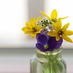 99px.ru аватар Баночка с цветами