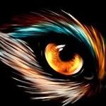 Аватар Глаз волка на черном фоне