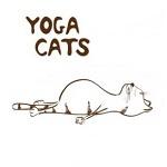 Аватар Кот в позе Трупа (Yoga cats)