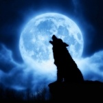 99px.ru аватар Силуэт воющего на голубую луну волка