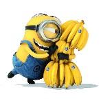 Аватар Одноглазый миньоны обнимает связку бананов из мультфильма Гадкий Я / Despicable Me