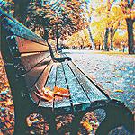 99px.ru аватар Лавочка в осеннем парке