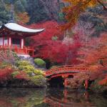 99px.ru аватар Храм Daigo-ji осенью, Kyoto / Киото, Japan / Япония