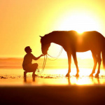 99px.ru аватар Парень сидит перед лошадью на фоне солнца у моря