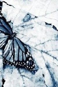 Обои фон - бабочка