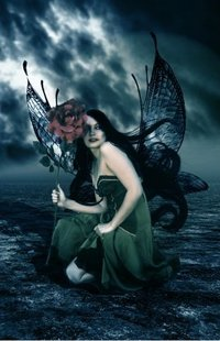 Обои Ангел с розой