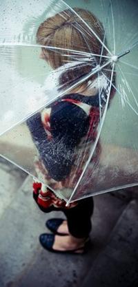 Обои девушка под прозрачным зонтом