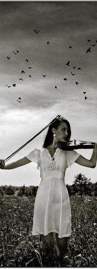 Аватар вконтакте девушка со скрипкой